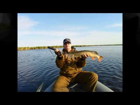 рыбалка на чограе 2017