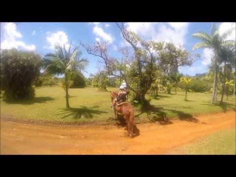 kauai, Silver falls ranch, Horseback Riding. april 2015