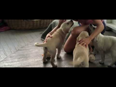 Marley & Me (Featurette)