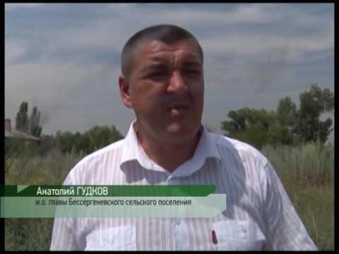 Уничтожение повилики полевой в Ростовской области