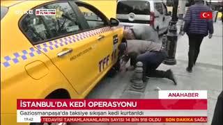 Arabanın Altına Sıkışan Kediyi Ekiplerimiz Kurtardı - Ülke Tv