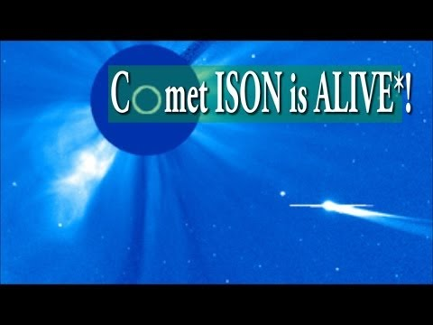 alive - www.youtube.com/thornews Comet ISON has survived and is alive*! What is left of the Nucleus? Is she a ghost in the shell? Reports of her death were greatly e...