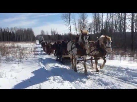 Riding Mountain sleigh ride
