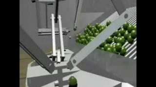 Robot posicionador máquina circular