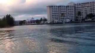 Lucaya Bahamas  city pictures gallery : Port Lucaya Bahamas