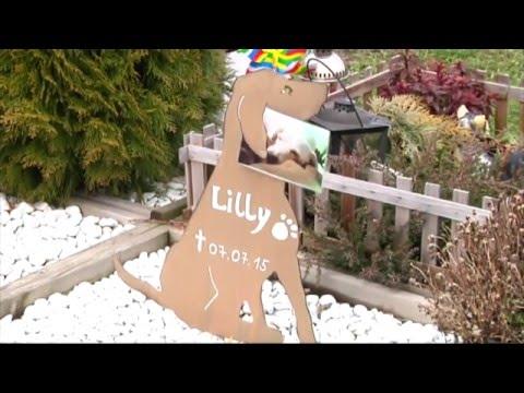 München: Tierfriedhof München - Die letzte Ruhe für das ...