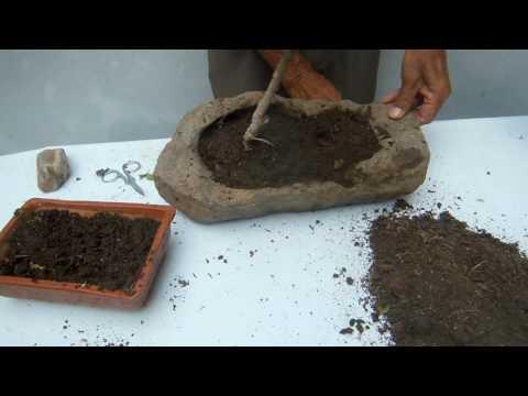Como hacer un jardin con piedras for Piedras blancas para decorar