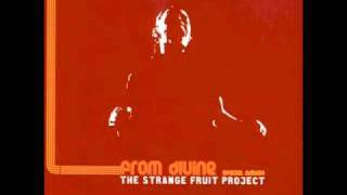 The Strange Fruit Project - Maintain