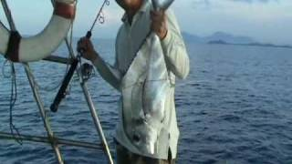 Dungun Malaysia  city pictures gallery : Jigging Ebek/DT (Diamond Trevally) in Dungun,Malaysia.mp4