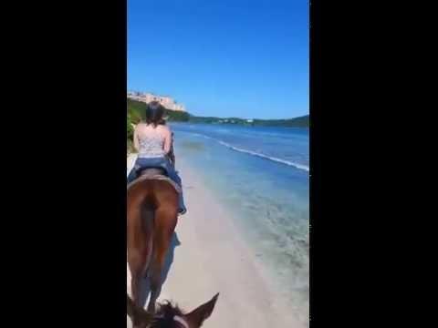 Horse back riding St. Thomas