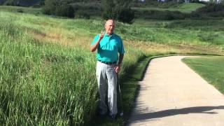 Jul 9, 2015 ... United States Golf Association (USGA) 14,800 views · 2:20. Proposed New Golf nRule: Replacing Ball When Original Spot Not Known...