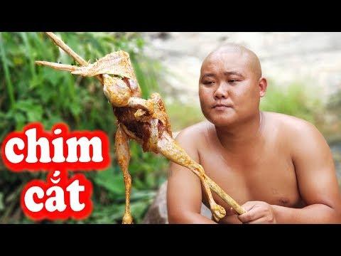 Cực Phẩm Chim Cắt và Cá Niên Đến Từ Miền Núi | Lần Đầu Tiên Thưởng Thức | Sơn Dược Vlogs #93 - Thời lượng: 21 phút.