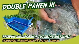 Video PANEN SAYUR DAN IKAN ! Aquaponik 100 titik tanam #akuaponik #aquaponik #3 MP3, 3GP, MP4, WEBM, AVI, FLV November 2018
