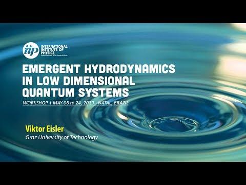 Domain-wall melting and hydrodynamics - Viktor Eisler