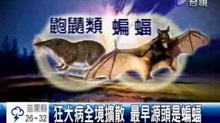 狂犬病全境擴散最早源頭是蝙蝠