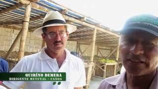 Video: Testimonios sobre efectos del #SismoenlosCampesinos
