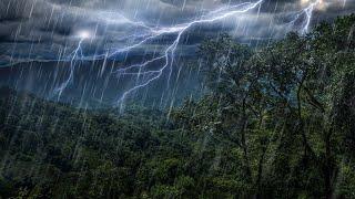 Video Rain Forest Thunder & Rain Sleep Sounds   White Noise 10 Hours MP3, 3GP, MP4, WEBM, AVI, FLV Agustus 2019