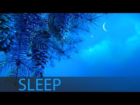 8 Hour Sleep Music For Insomnia: Deep Sleep Music, Sleeping Music, Help Insomnia ☯207