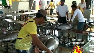 General Santos Philippines  city photos : Make My Trip Travel TV - Gensan International Fish Port Complex, Philippines