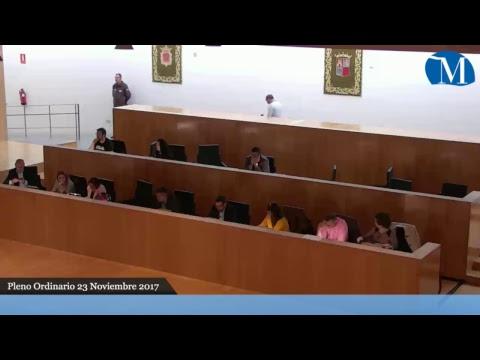 Pleno ordinario correspondiente al mes de noviembre
