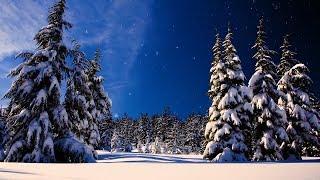 "Video Christmas music, Christmas instrumental Music,  ""Let It Snow"" by Tim Janis MP3, 3GP, MP4, WEBM, AVI, FLV Desember 2018"