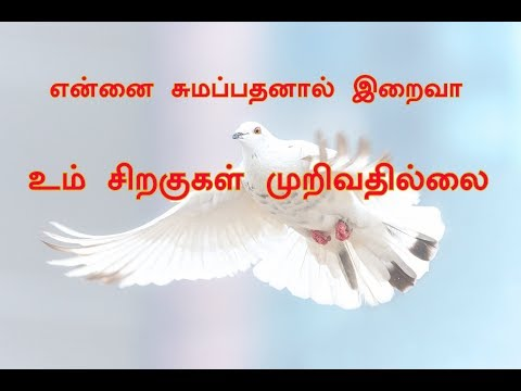 Video என்னை சுமப்பதனால் இறைவா | Ennai Sumappathanal Iraiva | download in MP3, 3GP, MP4, WEBM, AVI, FLV January 2017