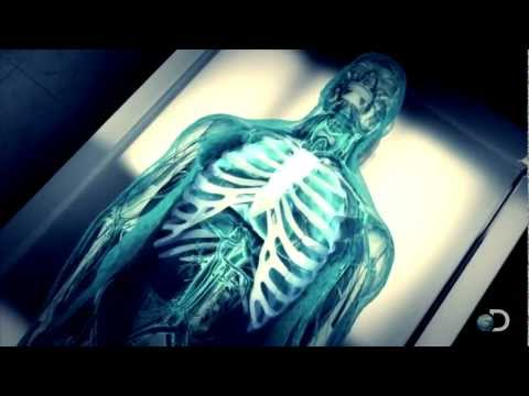 Mummification - CURIOSITY continues Sundays at 9/8c on Discovery. | http://dsc.discovery.com/tv-shows/curiosity#mkcpgn=ytdsc1 | Tune in as scientists begin mummifying a huma...