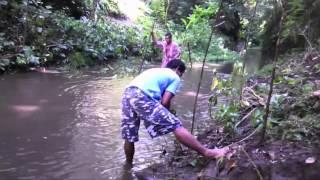 Dokumentasi Pembersihan dan penghijauan sungai, Banjar Panglan. Pejeng. Bali