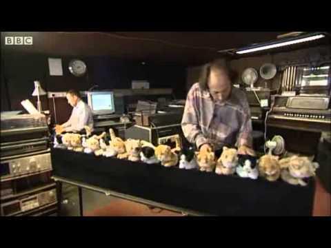 Guy Plays A Cat Organ (BBC)