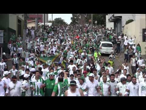 Torcida do Juventude : Os Donos da Cidade - Loucos da Papada - Juventude