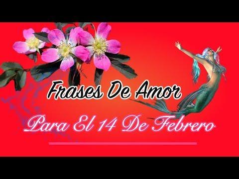 Frases De Amor Para El 14 De Febrero