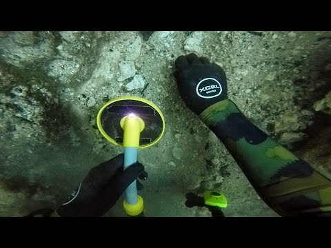 Scuba Diving the Devils Den for Lost Valuables! (Found 2 Prehistoric Bones) | DALLMYD_Diving. Best of all time