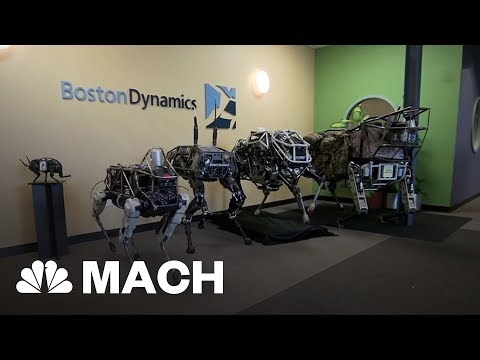 What The Future Holds For Boston Dynamics' Fleet Of Robots   Mach   NBC News