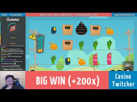 Birds on a Wire - BIG WIN - Bet size: €0.50