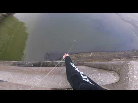 男子向全世界證明「誰說釣魚一定要用魚鉤」,看完差一點下跪了…