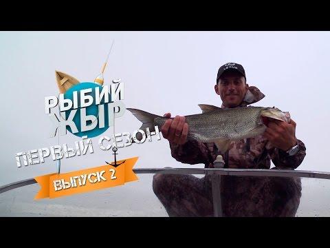 рыбак рыбака видео приложение
