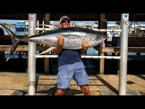 MASSIVE Yellowfin TUNA {Catch Clean Cook} 2 Recipes 1 Video