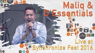 Maliq & D'Essentials live at Synchronize Fest - 30 Oktober 2016