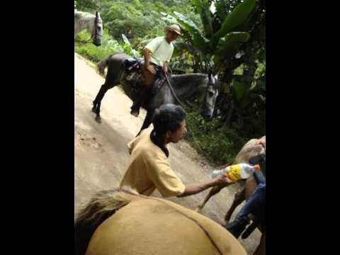 II Cavalgada Passa Vinte (2)