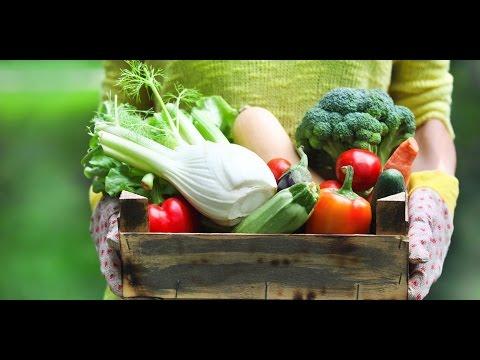 Zdrava prehrana v Termah Krka