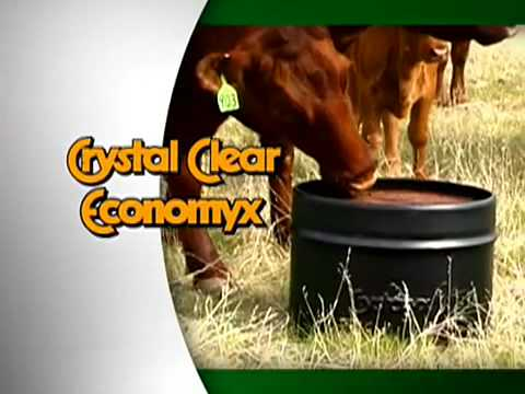 Crystal Clear Economyx®