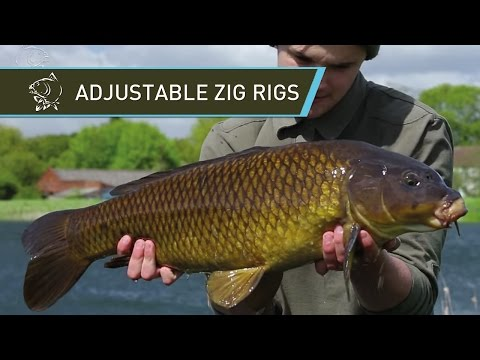 Carp Fishing Adjustable Zig Rigs using Nash Zig Bugs Zig Float and Gyro Bug Mix – Nash Tackle