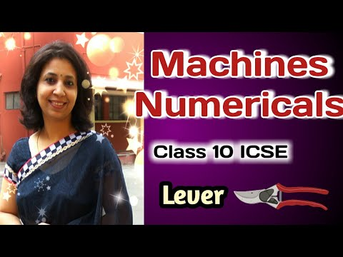 Machines Numericals // Class 10 ICSE Physics // Levers