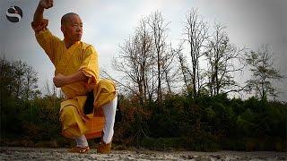 Medicina tradizionale cinese, benessere dall'Oriente. I consigli del Maestro Shaolin