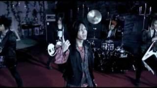 Acid Black Cherry / ジグソー