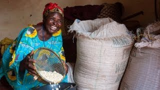 Small Business Women Of Northwest Cameroon