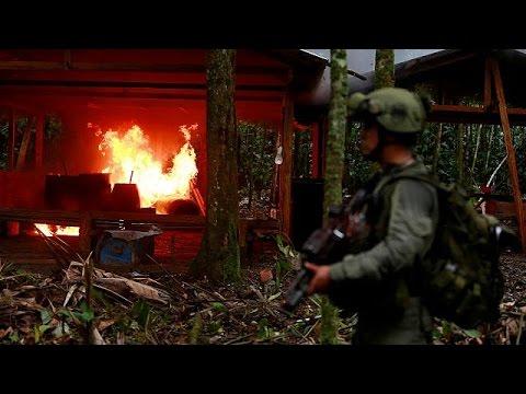 Κολομβία: 100 εργαστήρια παρασκευής κοκαΐνης κατέστρεψαν οι αρχές