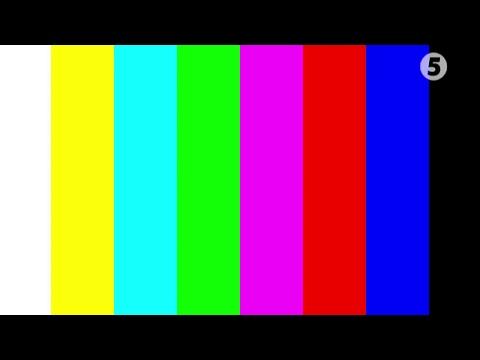 5 канал. Он-лайн трансляция