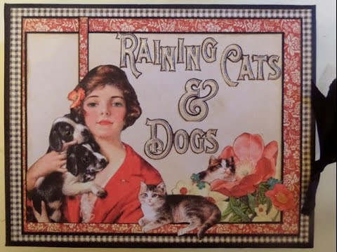 Raining Cats And Dogs Album Graphic 45