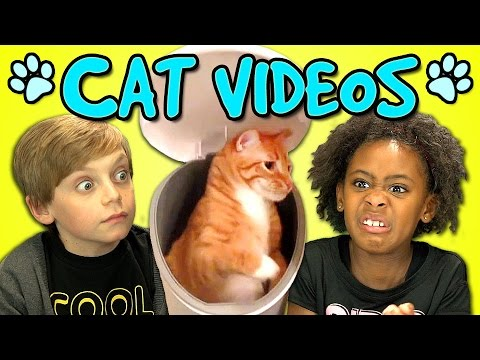 kids - Vote for your favorite cat videos at https://www.TheFriskies.com/ NEW Vids Sun,Thurs & Sat! Subscribe: http://bit.ly/TheFineBros Watch all main React Episodes: http://goo.gl/4iDVa Subscribe...